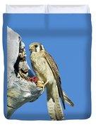 Kestrel At Nest Duvet Cover