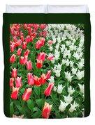 Keukenhof Gardens 7 Duvet Cover