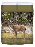 Key Deer Portrait Duvet Cover