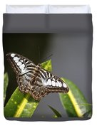 Key West Butterfly Conservatory - In Brown And White Duvet Cover