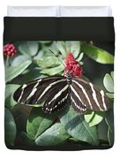 Key West Butterfly Conservatory - Zebra Heliconian Duvet Cover