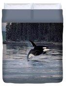 Killer Whale Orcinus Orca Breaching Duvet Cover