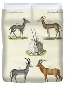 Kinds Of Antilopes Duvet Cover