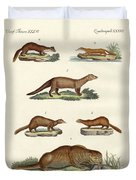 Kinds Of Otters And Marten Duvet Cover