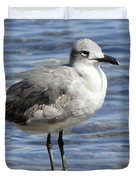King Of The Rock Seagull Duvet Cover