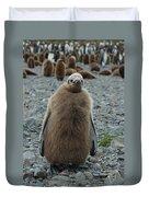 King Penguin Chick Duvet Cover