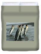 King Penguins Coming Ashore Duvet Cover