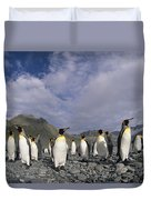 King Penguins On Rocky Beach South Duvet Cover