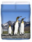 King Penguins St Andrews Bay South Duvet Cover