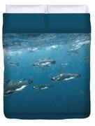 King Penguins Swimming Underwater Duvet Cover