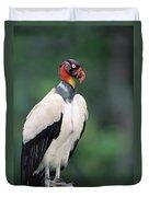 King Vulture In Breeding Colors Duvet Cover