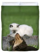 Kitten And Puppy Playing Duvet Cover