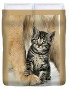 Kitten With Golden Retriever Duvet Cover