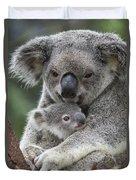 Koala Mother Holding Joey Australia Duvet Cover