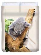 Koala Sleeping  Duvet Cover