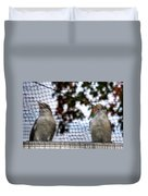 Kookaburra's On Guard At The Buffalo Zoo Duvet Cover