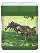 Kudu Antelope In A Straight Line Duvet Cover