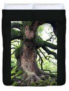 Kyoto Temple Tree Duvet Cover by Carol Groenen