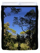 jungle in La Amistad National Park Panama 1 Duvet Cover