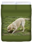 Labrador Checking Hole Duvet Cover
