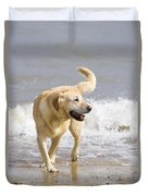 Labrador Dog Playing On Beach Duvet Cover
