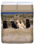 Labrador Dogs Waiting For Orders Duvet Cover