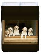 Labrador Puppies At Window Duvet Cover