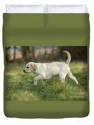 Labrador Puppy Duvet Cover
