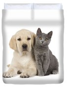 Labrador Puppy With Chartreux Kitten Duvet Cover