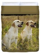 Labrador Retriever Dogs Duvet Cover