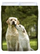Labradors, Adult And Young Duvet Cover