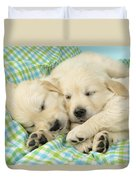 Labs Sleeping On A Blanket Duvet Cover by Greg Cuddiford