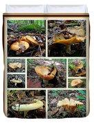 Lactarius Torminosus - Yellow Mushrooms Duvet Cover