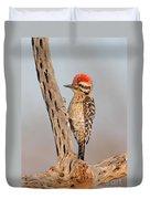 Ladder-backed Woodpecker Duvet Cover