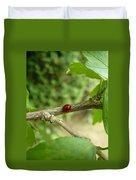 Lady Bug Branch Duvet Cover