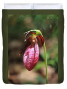 Lady Slipper At Moore State Park Close Up 2 Duvet Cover