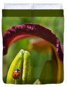 Ladybird Beetle Cuddled By Lily Blossom 4 Duvet Cover