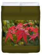 Ladybird With Autumn Leaves Duvet Cover
