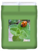Ladybug And Oregano Duvet Cover