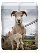 Lamb On A Farm, Iceland Duvet Cover