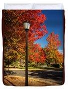 Lamp Post On The Corner Duvet Cover
