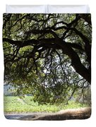 Landscape At The Jack London Ranch In The Sonoma California Wine Country 5d24583 Duvet Cover