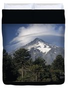 Lanin Volcano And Araucaria Trees Duvet Cover