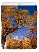 Larch Trees Frame Prusik Peak Duvet Cover