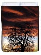 Large Cottonwood At Sunset Duvet Cover