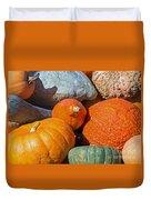 Large Edible Gourds Duvet Cover