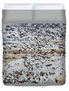 Large Flocks Of Migratory Birds Stop Duvet Cover