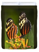 Large Tiger Butterflies Duvet Cover