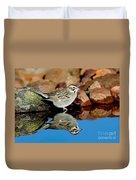 Lark Sparrow Chondestes Grammacus Duvet Cover