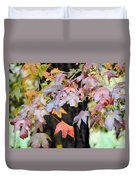 Late Autumn Maples Duvet Cover
